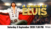 A Vision of Elvis - CLICK FOR MORE INFO!
